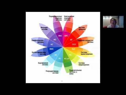12 констант жизни и здоровья