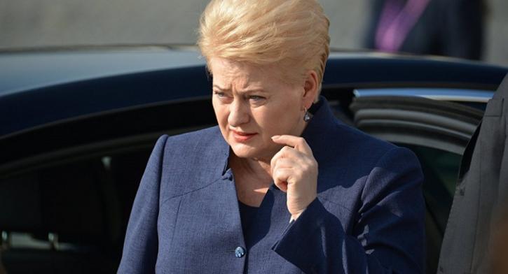 Мозги включите: в Москве жёстко ответили Грибаускайте на истеричный выпад в сторону России