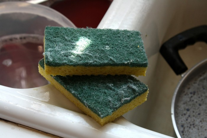 Самые грязные места у вас на кухне