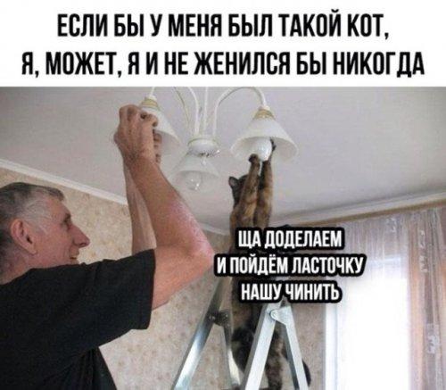 Подборка прикольных картинок!