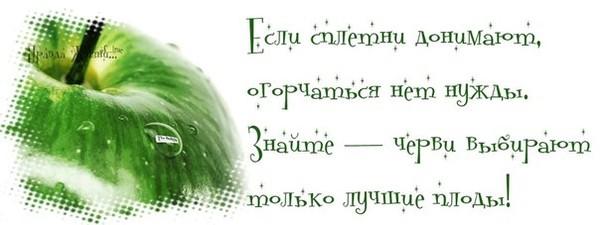 http://mtdata.ru/u18/photo3875/20527029179-0/original.jpg#20527029179