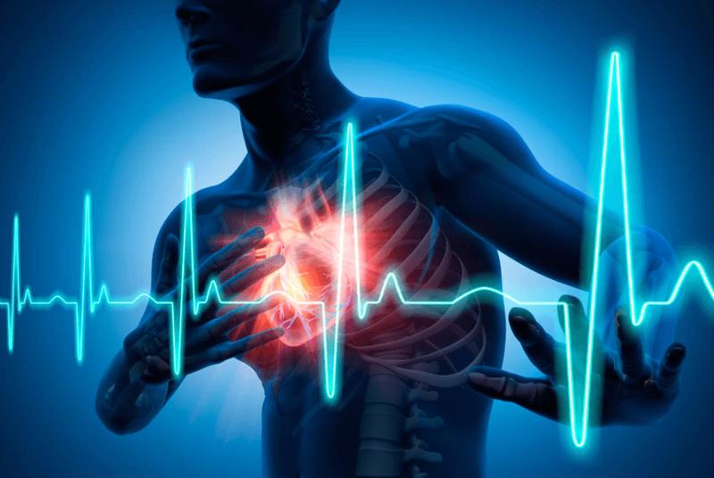 Сердечный ПРИСТУП: организм …