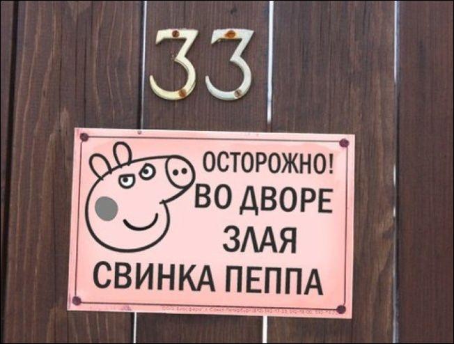 Прикольные картинки с надписями свинья