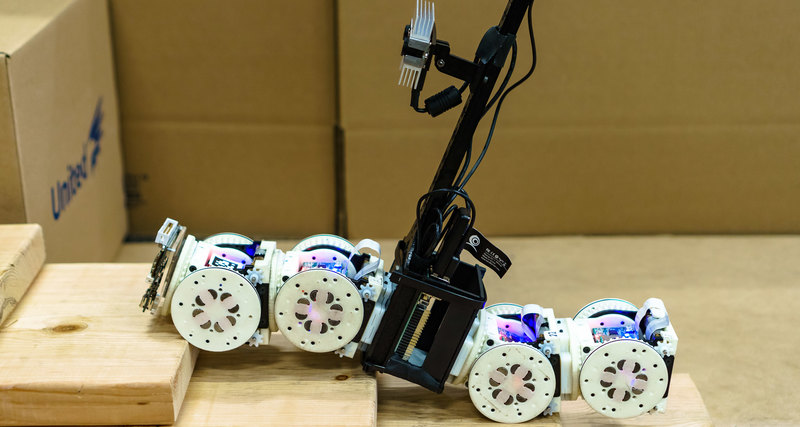 Робот-оборотень: много форм, много функций