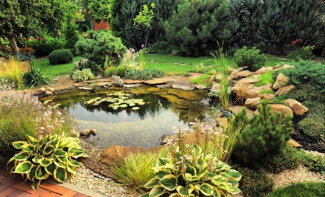 Как создать сад камней своими руками - 5 оригинальных идей