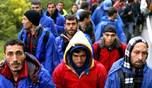 Доигралась: Мигранты в ЕС на…