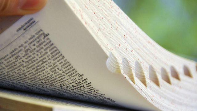 Летологика: когда слово вертится на языке слово, вспомнить, тысяч, часто, когда, которые, летологика, слова, словарный, термин, запас, может, психолог, редко, информации, устной, имена, превышает, место, письменной