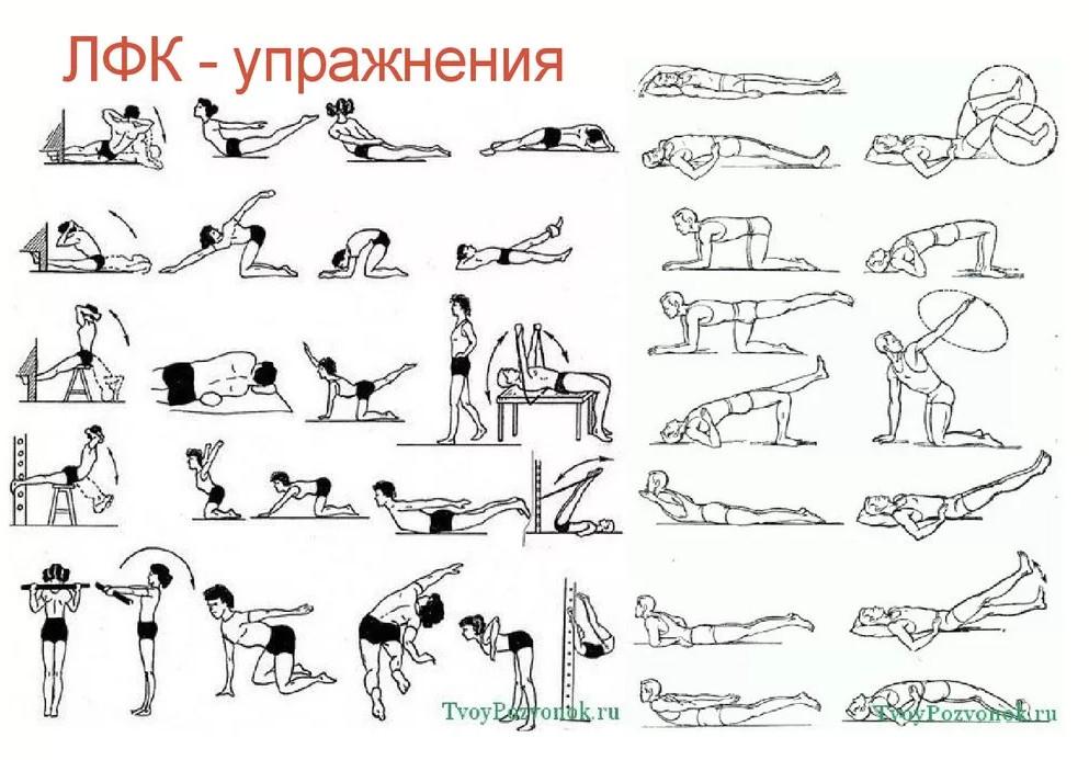 записи комплекс упражнений в картинках для лфк кошка
