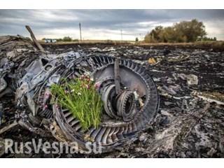 Дело MH17: Неожиданная смена отношения западных политиков к крушению «Боинга» на Донбассе