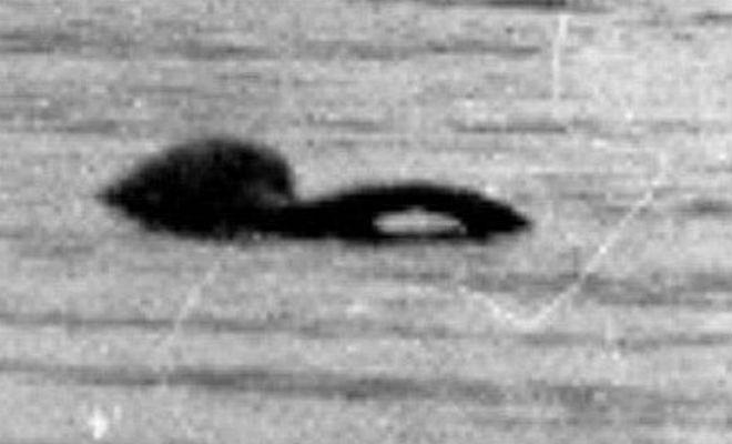 Лох-несское чудовище попалось на камеру два раза за пять дней всего, Охотники, вебкамеру, южной, зверя, силуэт, темный, поймал, Несси, использовал, озера, охотник, профессиональный, Каслфина, О'Фаодхаген, спустя, стороне, ЛохНессВпрочем, неопознанного, монстре
