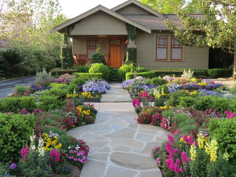 Вот какие цветы можно посадить и посеять в августе