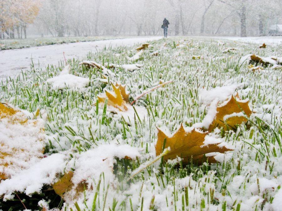 Первый снег, как самый первый вздох...