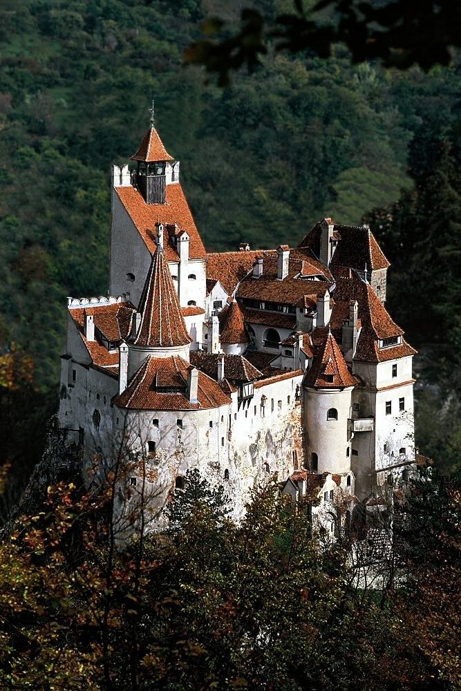 Знаменитый замок графа Дракулы выставлен на аукцион