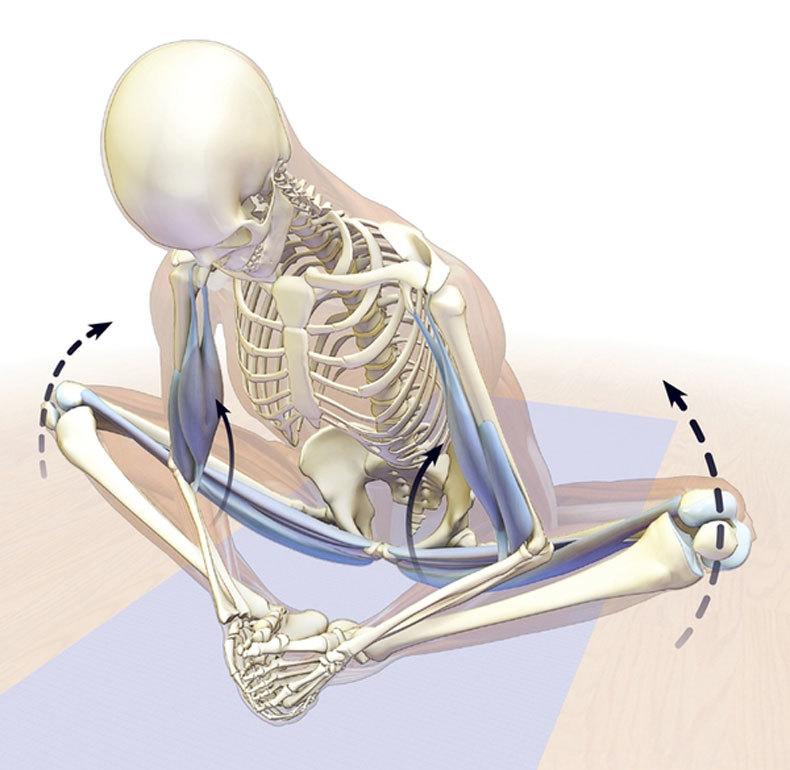 Приструнить седалищный нерв. Одно просто упражнение!