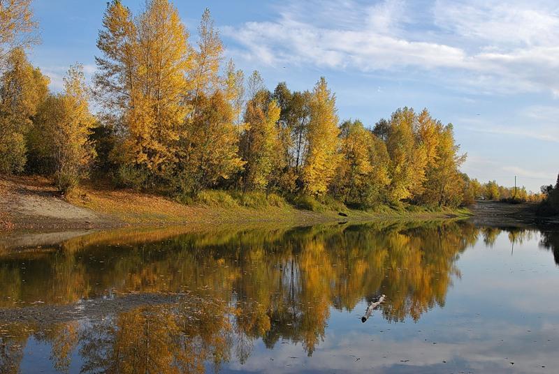 На отраженье засмотрелась осень (Теплякова Наталья)