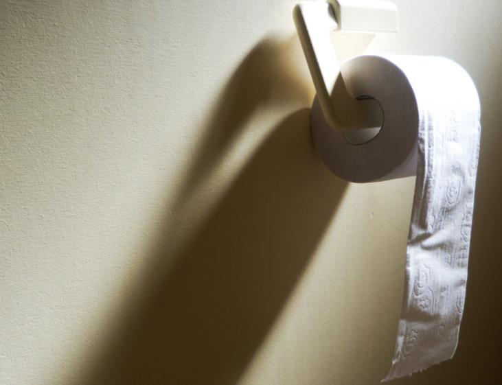 Казахстанские учёные изобрели многоразовую туалетную бумагу