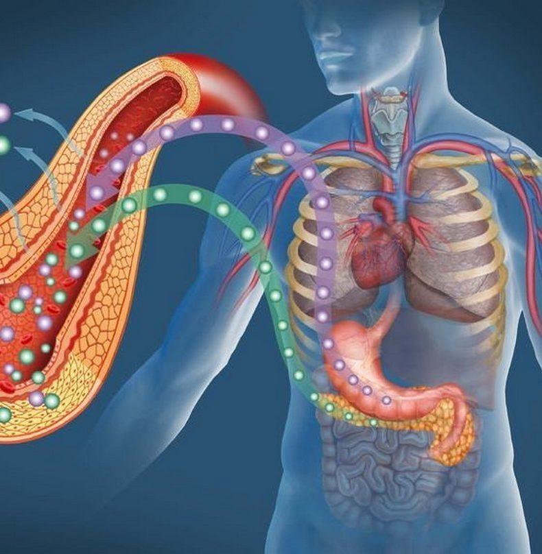 Японская система стройности: Как похудеть во время сна ароматерапия,здоровье,красота,похудение,сон