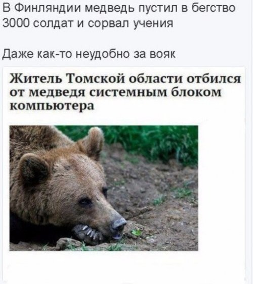 https://mtdata.ru/u18/photo686B/20544577794-0/original.jpeg#20544577794