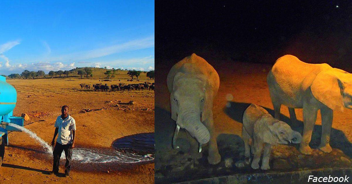 Чтобы дикие животные не Ñтрадали от заÑухи, Ñтот парень Ñам возит им воду