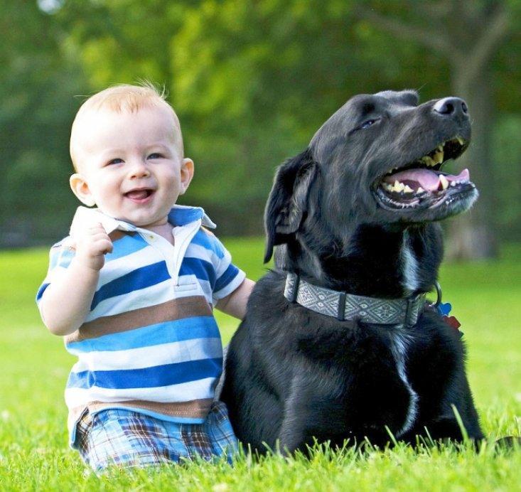 """""""И кто из них мать?"""" Эта собака двое суток согревала брошенного на морозе ребенка и вот что случилось потом"""