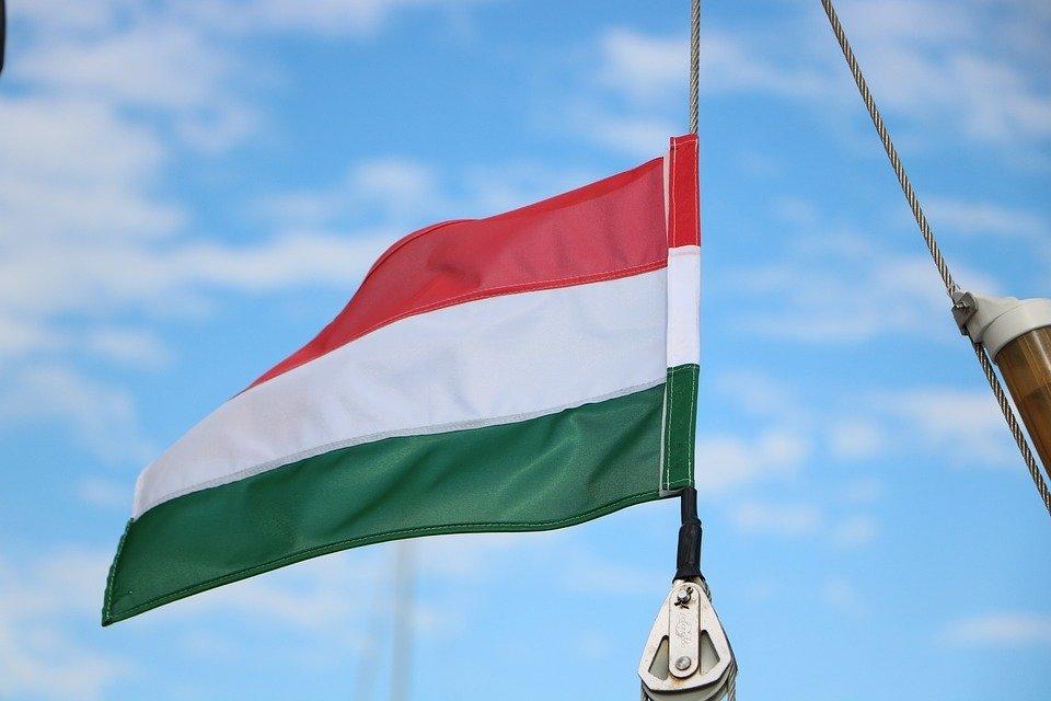 Бывший дипломат прокомментировал ситуацию с протестами в Венгрии
