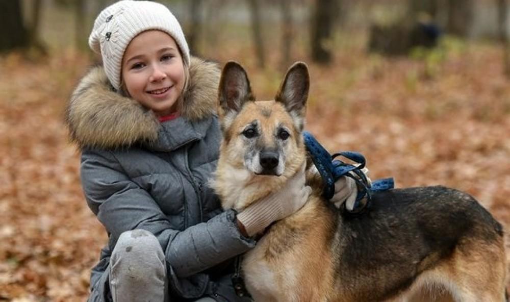 Невероятный талант телепатии с животными проявился у 11-летней девочки