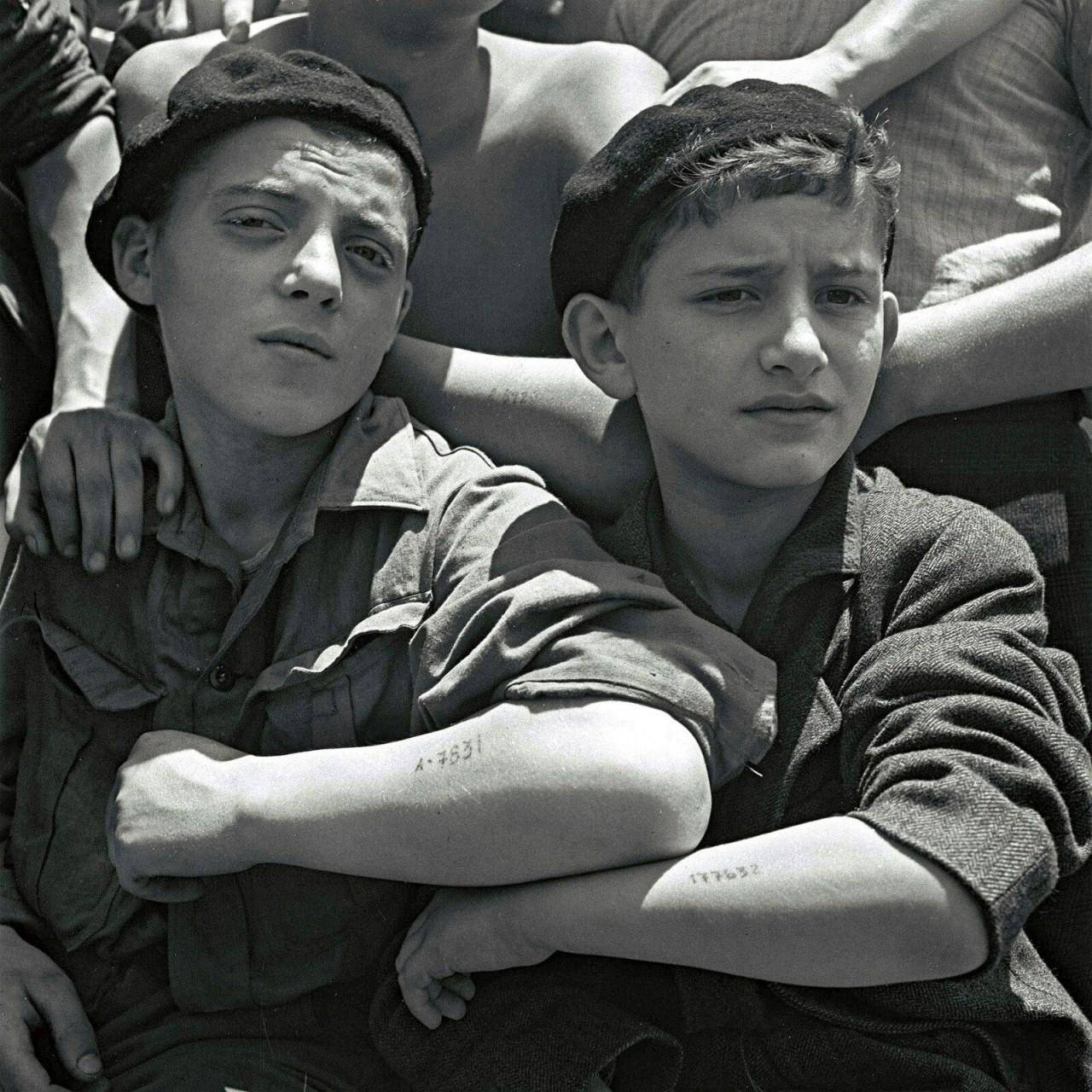 Еврейские мальчишки, освобожденные из Аушвица, показывают свои лагерные татуировки на борту корабля для беженцев, 15 июля 1945 года аушвиц, вторая мировая война, день памяти, конц.лагерь, концентрационный лагерь, освенцим, узники, холокост