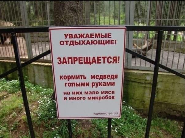 Когда поход в зоопарк оказал…
