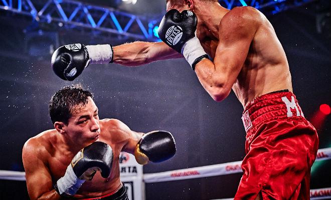 Бокс или борьба: тренеры сравнили реальную пользу для новичка тренировки, улице, быстрее, применения, только, просто, человек, борцовские, приемы, Споры, самозащите, навыка, реального, борьбой, чистой, противникомЗаниматься, человека, встрече, выгодно, потенциал
