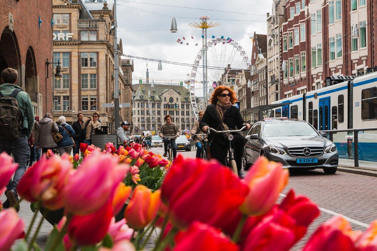 Пестрые дома в Голландии и три окна на фасаде – это не случайность, это необходимость!