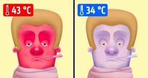 Что произойдет с вами при экстремально низкой либо высокой температуре тела