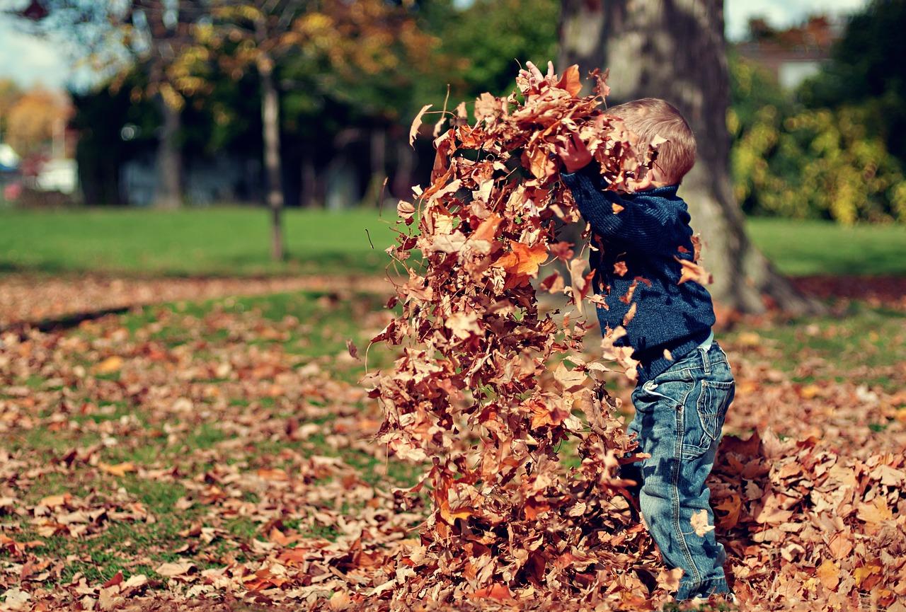 Картинка осень с людьми