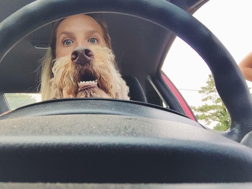 Прикольные картинки в дорогу на автомобиле, открытки новому