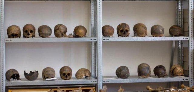 Черепа, найденные на поле битвы история, мумии, наука, скелеты