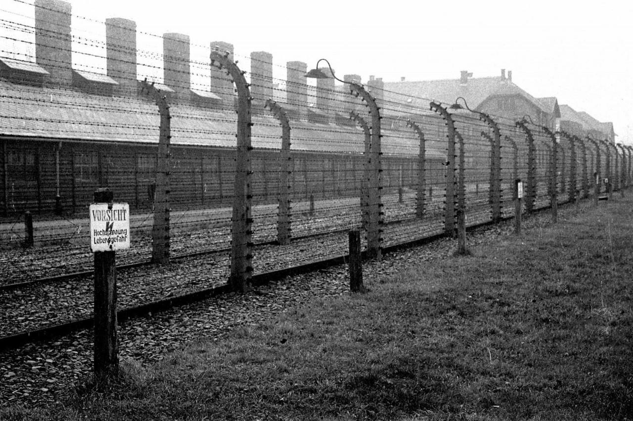 Колючая проволока в Аушвице, 1945 год аушвиц, вторая мировая война, день памяти, конц.лагерь, концентрационный лагерь, освенцим, узники, холокост