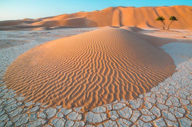Самые удивительные фото пустынь со всех континентов