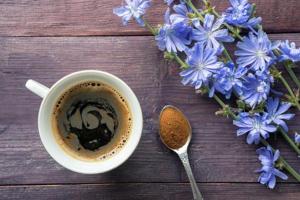 Цикорий заменяет кофе