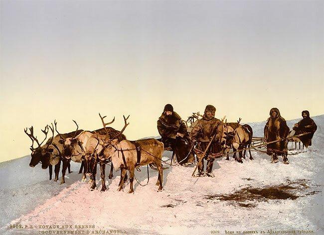 Поездка на оленях, Архангельск, Россия, 1890-е интересно, исторические кадры, исторические фото, история, ретро фото, старые фото, фото