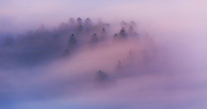 Горы в тумане - красивейшее зрелище на Земле
