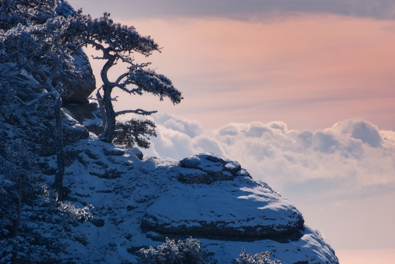Зимний Крым в фотографиях Даниила Коржонова