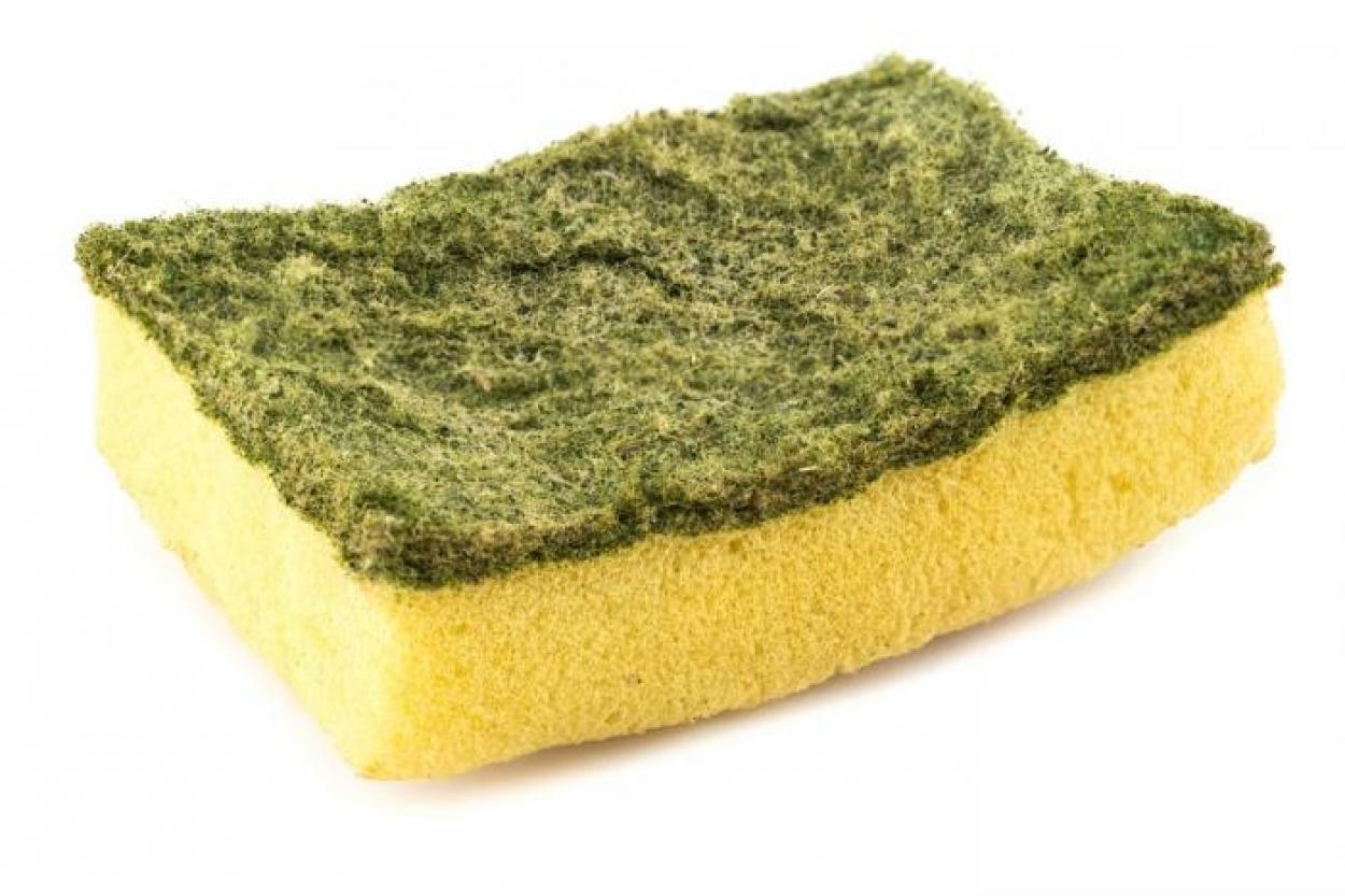 Самый опасный бытовой предмет, который есть в каждом доме бактерии