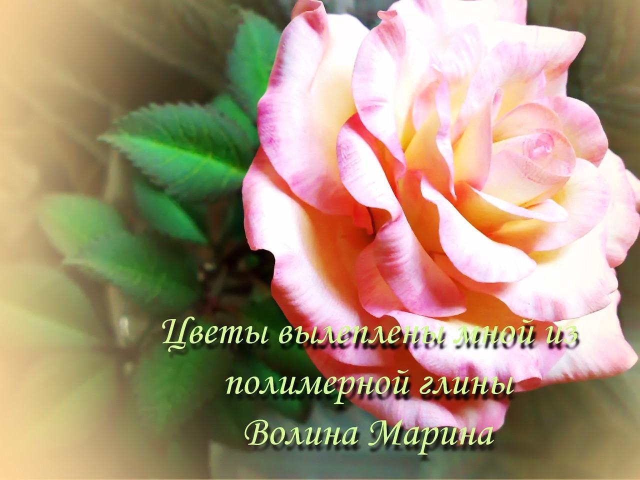 Открытка красивые цветы для марины