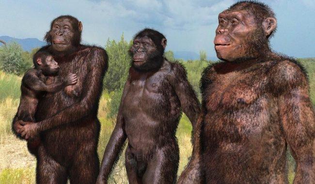 Эволюция человека: обратно к…