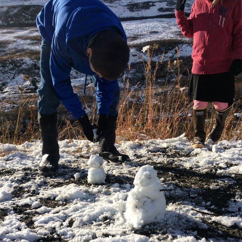 делают снеговичков аляска, жизнь, лось, медведь, путешествие, сова