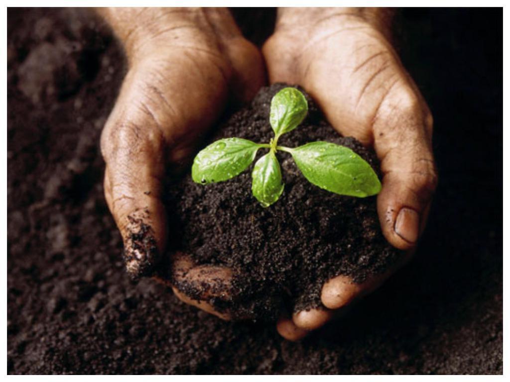 Почему в пятницу нельзя менять постельное белье, в четверг сажать новые растения, а в среду устраиваться на работу: вещи, которые стоит знать каждому