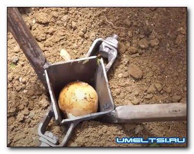 Самодельное приспособление для посадки картофеля