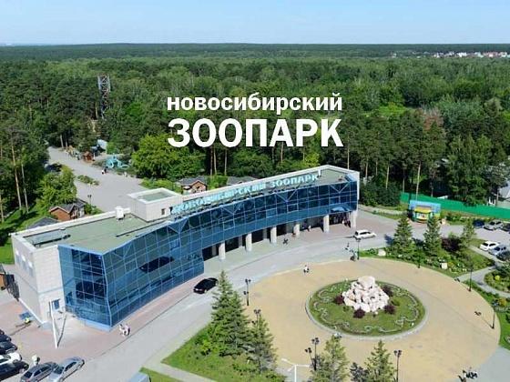 В Новосибирском зоопарке поя…