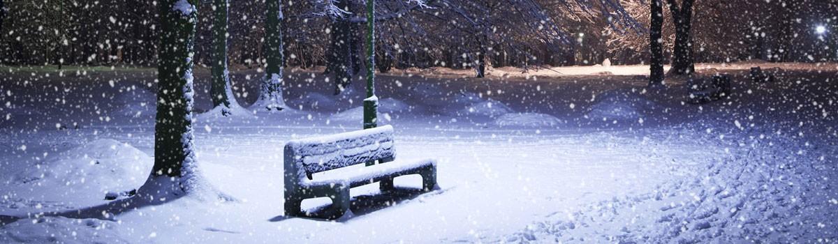 ФОТОЛИКБЕЗ. Как правильно сделать зимнюю фотографию?