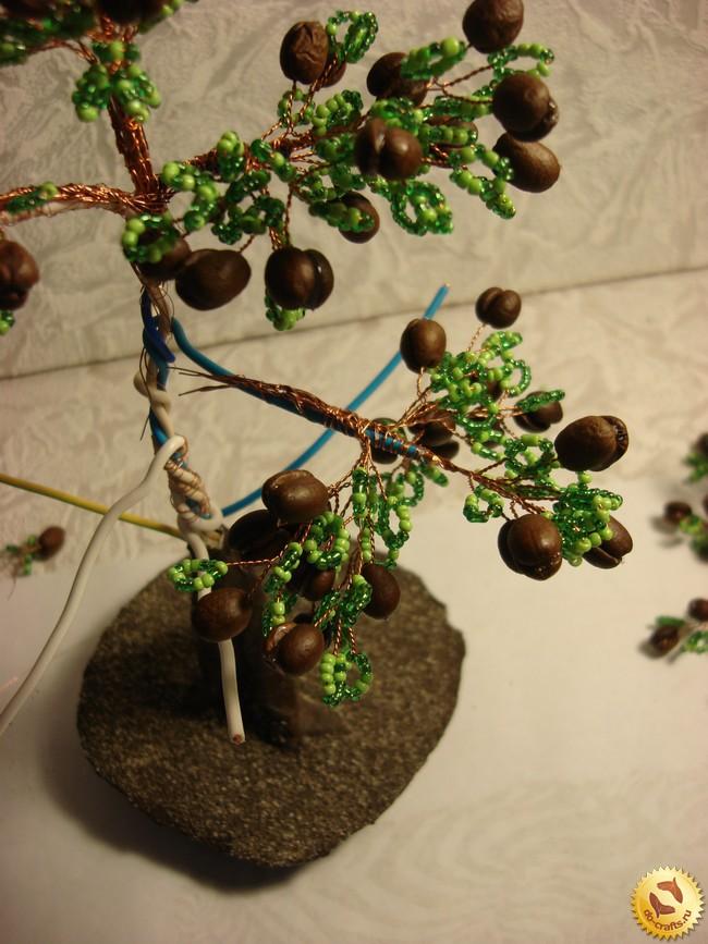 Веточка кофейного дерева из чего делается кофе