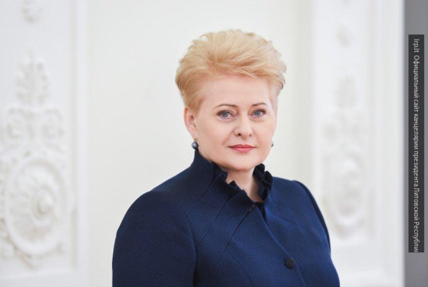 Яровая резко осадила президента Литвы за высказывания о России